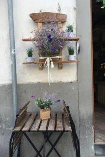 Cicalone Restaurant, Santa Maria Novella, Florence, Italy